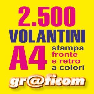 volantini A4 2500