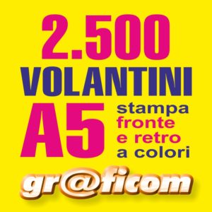volantini A5 2500